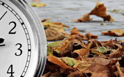 W nową codzienność z Ojcem Założycielem – kwadrans na wrzesień