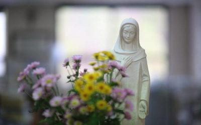 Cała Piękna – październikowe lectio divina z Maryją